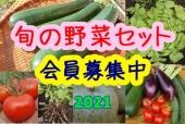 2021野菜セットアイコン